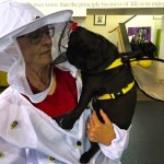 Photos From The Best Halloween Party Just For Pugs -Pugoween 2016 - bee & bee keeper 3