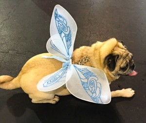 Photos From The Best Halloween Party Just For Pugs -Pugoween 2016 - fairy