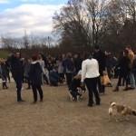 crowd at Trintiy Bellwoods dog bowl for the Novemeber 2016 Toronto Pug Grumble