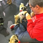 Tim gives pugs treats at the Pugalug Pug Claus Christmas Party