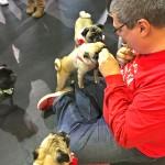 Tim gives pugs treats at the Pugalug Pug Claus Christmas Party